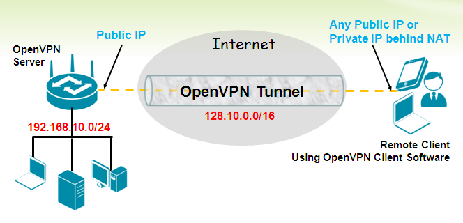Figure 3 - OpenVPN User Scenario Example